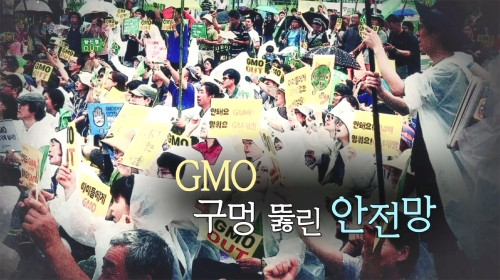 GMO 구멍뚫린 안전망
