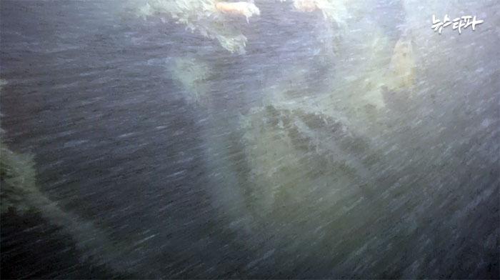 특조위 수중 촬영 영상 중 뻥 뚫린 객실 부분