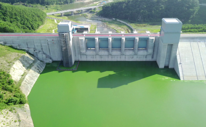 ▲영주댐의 녹조 현상 (2017년 7월 촬영, 영주시민 제보 영상)