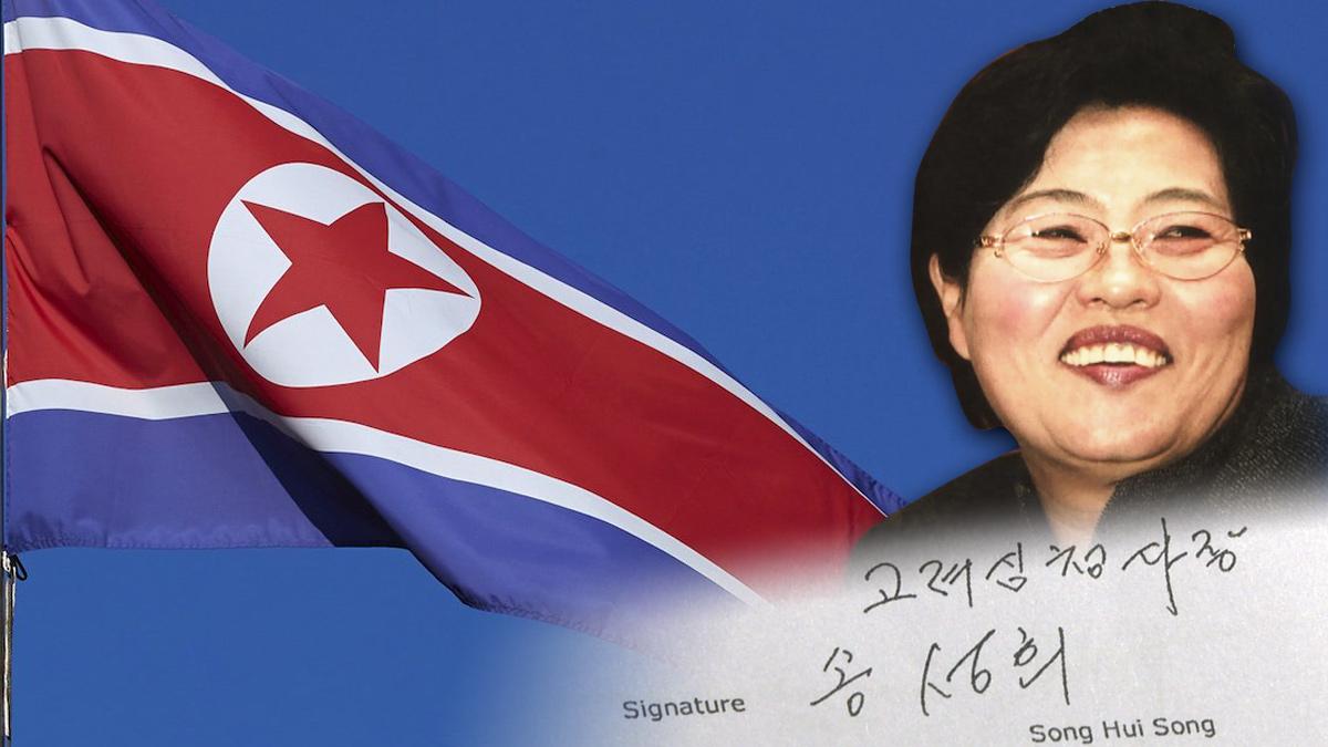 조세도피처로 간 북한의 '애국기업인' 2세