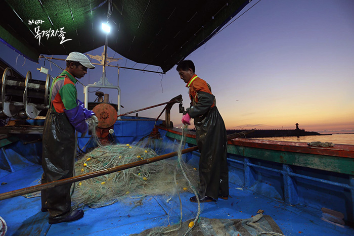 ▲ 어업비자를 받고 국내 연근해어업에 종사하는 스리랑카 이주 노동자